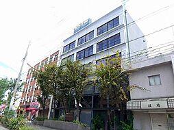 枝川ハイツ[5階]の外観