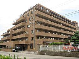 信開ガーデンコート栄町[107号室]の外観