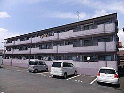 静岡県富士市浅間上町の賃貸マンションの外観