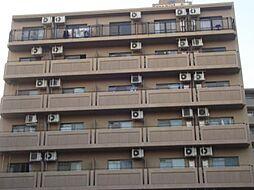 ロマネスク甲南[703号室号室]の外観