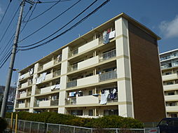 千葉県松戸市常盤平3丁目の賃貸マンションの外観