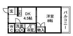 滋賀県東近江市八日市東浜町の賃貸マンションの間取り