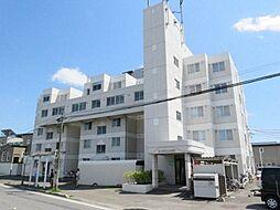 シャテロ菊水元町[5階]の外観