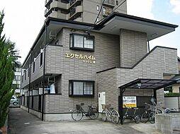 愛知県安城市東栄町1丁目の賃貸アパートの外観