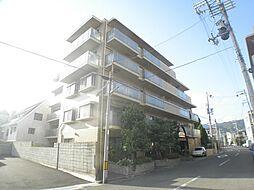 兵庫県芦屋市精道町の賃貸マンションの外観