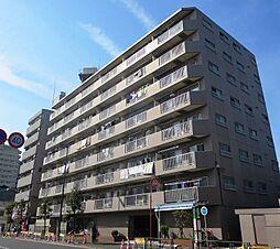 New  〜エンゼルハイム城東公園〜 角部屋・ビッグWIC