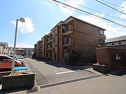 初石駅 5.9万円
