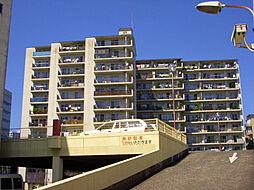 小倉スカイマンション天神島[505号室]の外観