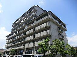 Lui Chance 1[6階]の外観