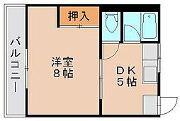 東林寺コーポ[4階]の間取り