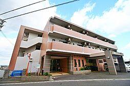 サンロワール和泉砂川[5階]の外観