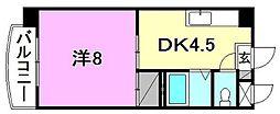 R5マンション[405 号室号室]の間取り