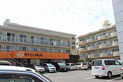 五日市駅 3.3万円