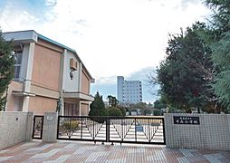 千石小学校 300m
