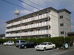 新栄ビル[401号室]の外観