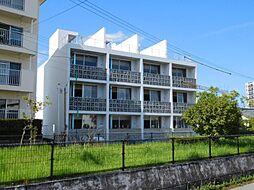 宮崎県宮崎市柳丸町の賃貸アパートの外観