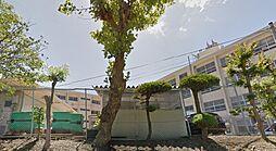 [テラスハウス] 兵庫県神戸市垂水区塩屋町9丁目 の賃貸【/】の外観