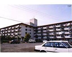 松山グランドハイツ[505 号室号室]の外観