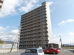 千代マンション8号館[4階]の外観