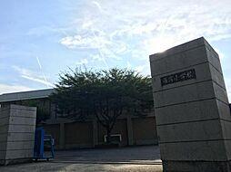 雁宿小学校 1100m 徒歩約14分