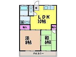 愛媛県松山市東石井3丁目の賃貸マンションの間取り