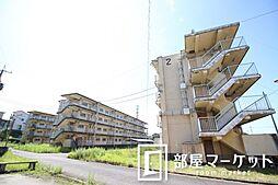 愛知県豊田市秋葉町7丁目の賃貸マンションの外観
