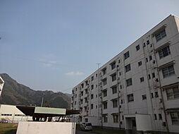VH石生-II[4階]の外観
