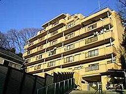 CASSIA保土ヶ谷(旧日宝コートヒルズ保土ヶ谷)[0304号室]の外観