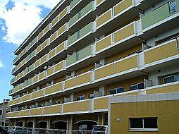 ブランチ913[3階]の外観
