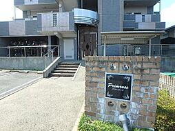 プリムローズ[5階]の外観