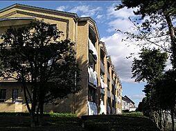 栃木県宇都宮市陽東2丁目の賃貸マンションの外観