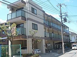 夙川ハイツAIOI[206号室]の外観