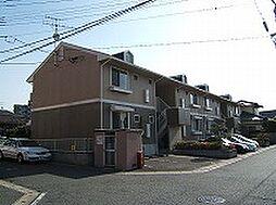 セジュール筒井[2階]の外観