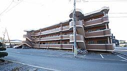 ウィステリア府所[3階]の外観