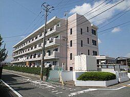 福岡県太宰府市通古賀4丁目の賃貸マンションの外観