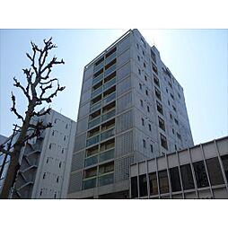 桜ヒルズ[6階]の外観