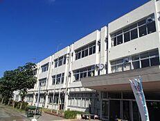 小学校多摩市立連光寺小学校まで1016m