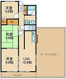 千葉県松戸市栄町6丁目の賃貸マンションの間取り