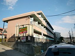 神奈川県川崎市麻生区片平1丁目の賃貸マンションの外観