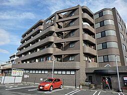 K・S柿生[5階]の外観