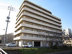 愛媛県松山市来住町の賃貸マンションの外観