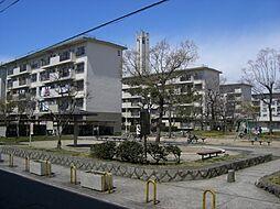春木駅 4.3万円
