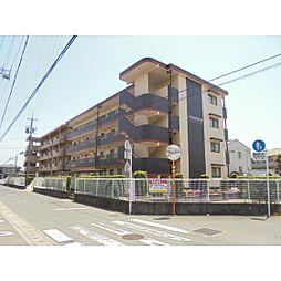 静岡県浜松市南区増楽町の賃貸マンションの外観
