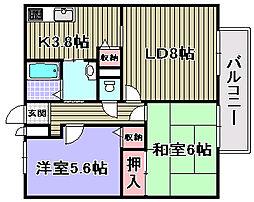 マノワールYAMAMOTO[1階]の間取り