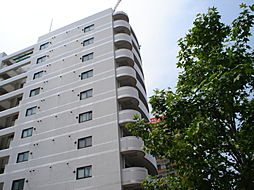 ホワイトヒルズ東桜[3階]の外観