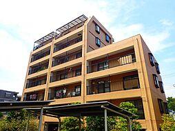 TWNCOURT・CAPELLA[3階]の外観