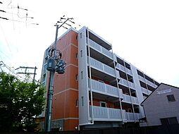 GROOVE城東(グローブ ジョウトウ)[207号室号室]の外観