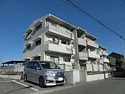 愛知県あま市甚目寺乾出の賃貸マンションの外観