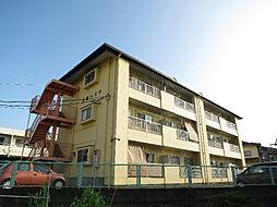 土屋ハイツ[2階]の外観
