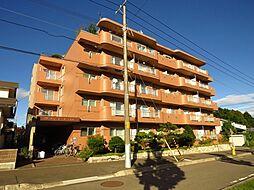 グランコート上野幌[3階]の外観